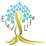 ELEV8LIFE: 20% OFF ALL SERVICES!